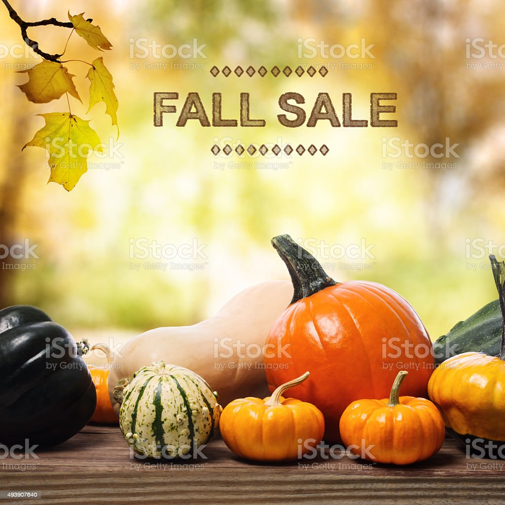 Fall Sale message with assorted pumpkins stock photo