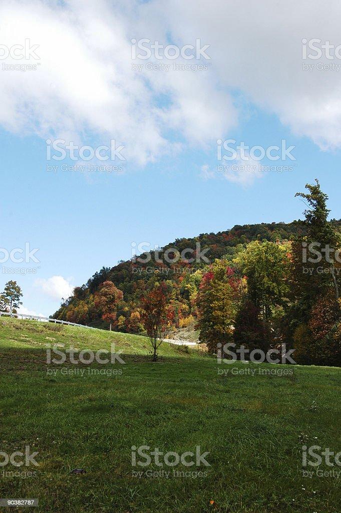 Fall scence stock photo