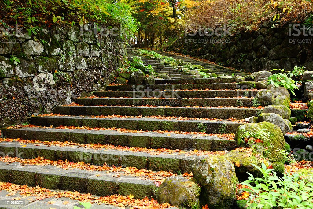fall stairs stock photo