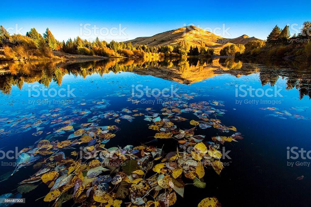 Fall - Sun Valley, ID stock photo