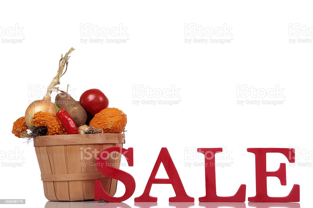 SALE - Fall Thanksgiving Concept stock photo