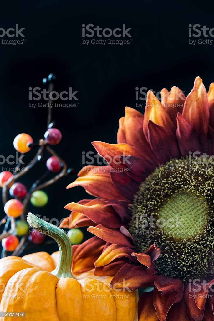 Fall themed still life with black background stock photo