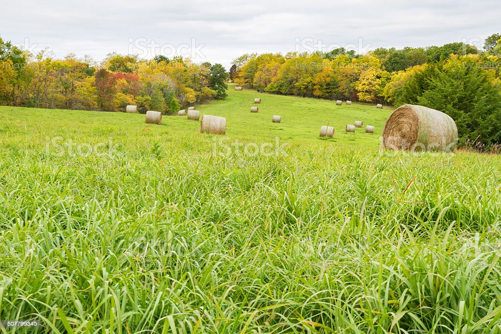 Fall Time Hay Field stock photo