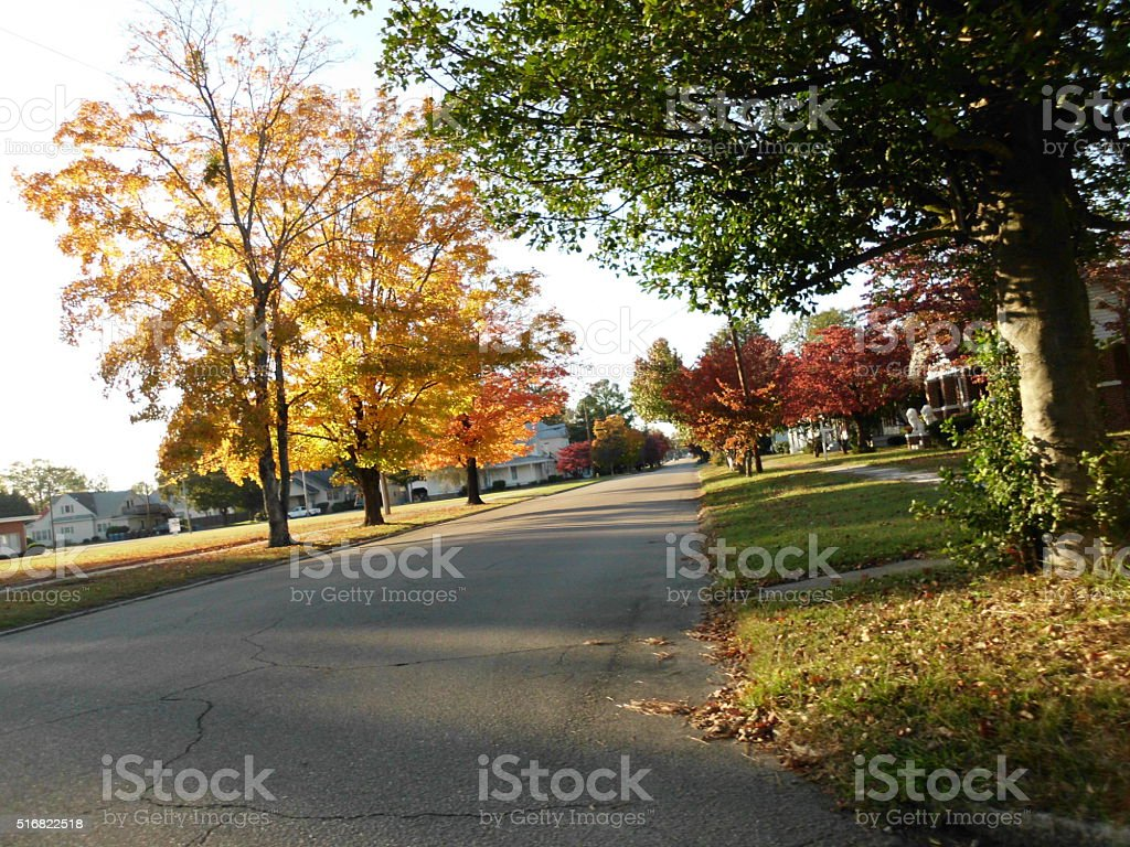 Fall Time stock photo
