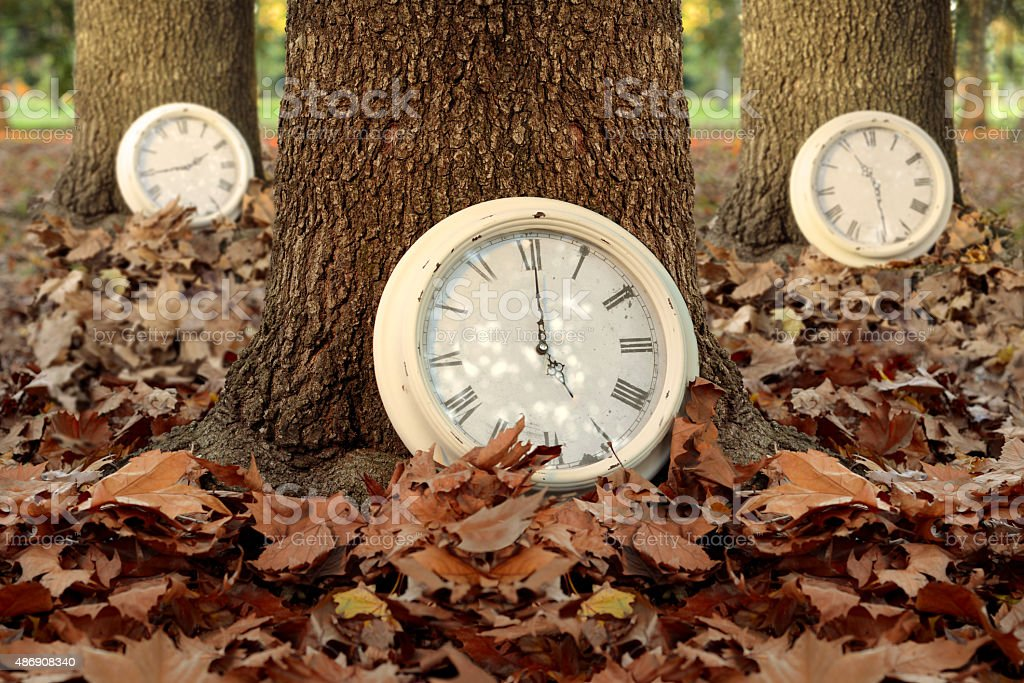 Fall time season clocks leaf forest background stock photo