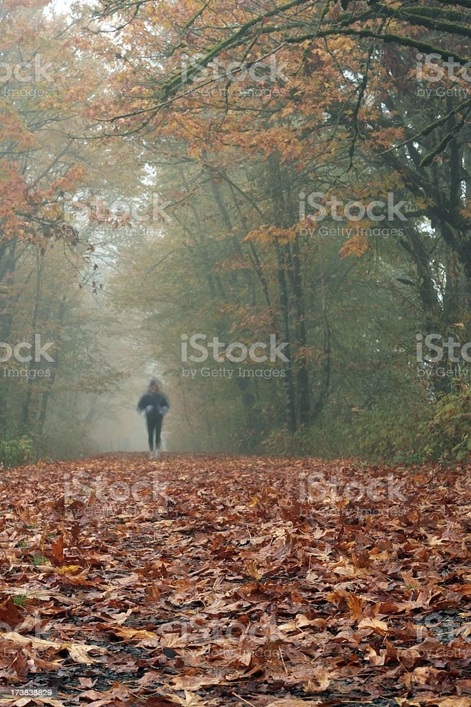 Fall Trail Runner royalty-free stock photo