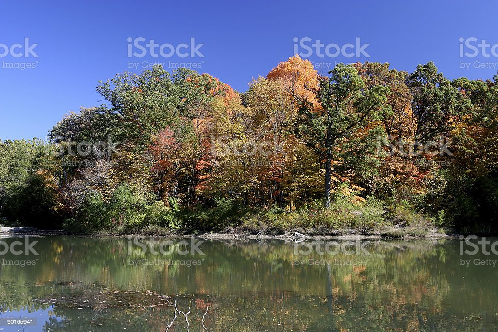 Fall Tree Colors and Lake stock photo