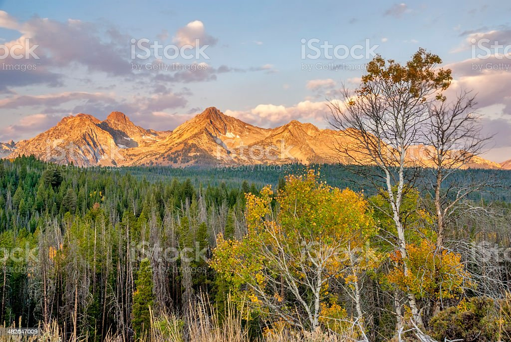Fall trees on the Sawtooth mountains stock photo