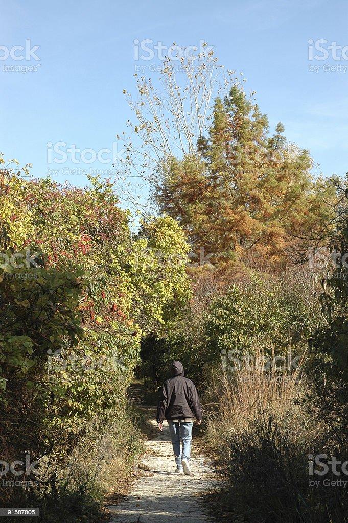 Падение ходьбы Стоковые фото Стоковая фотография
