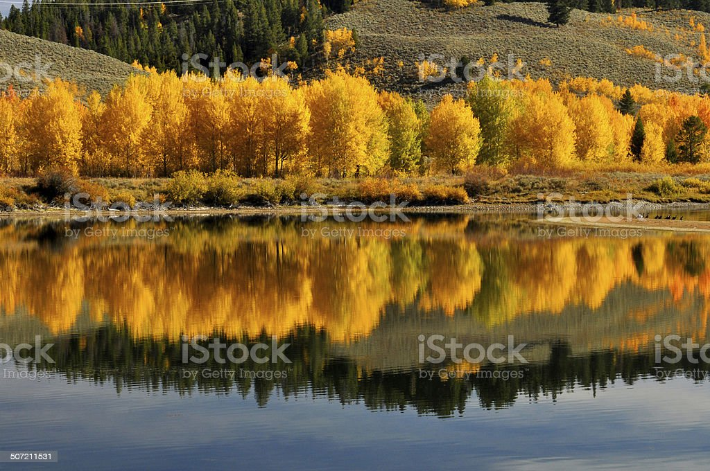 Fall water reflections in the Grand Tetons royalty-free stock photo