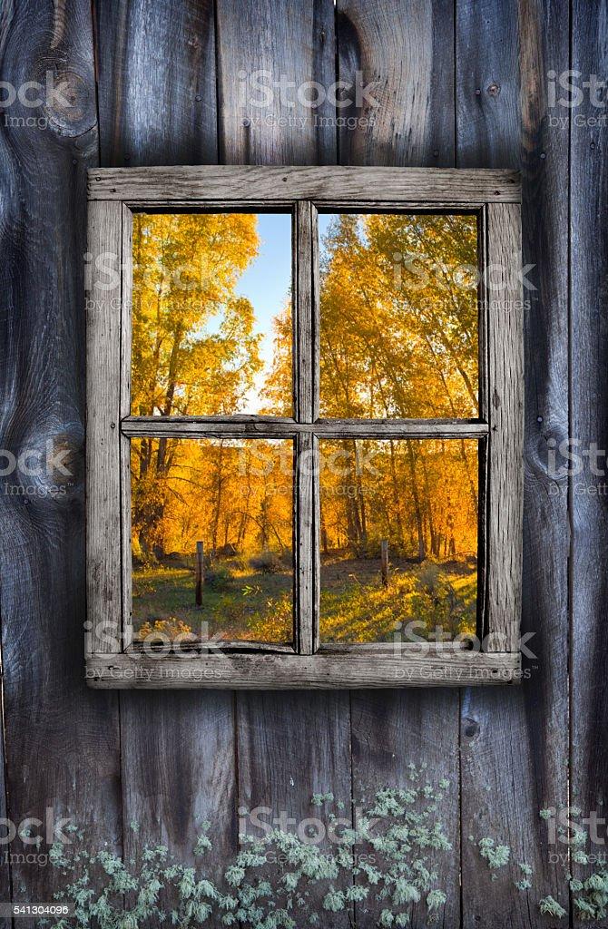 Fall window design stock photo