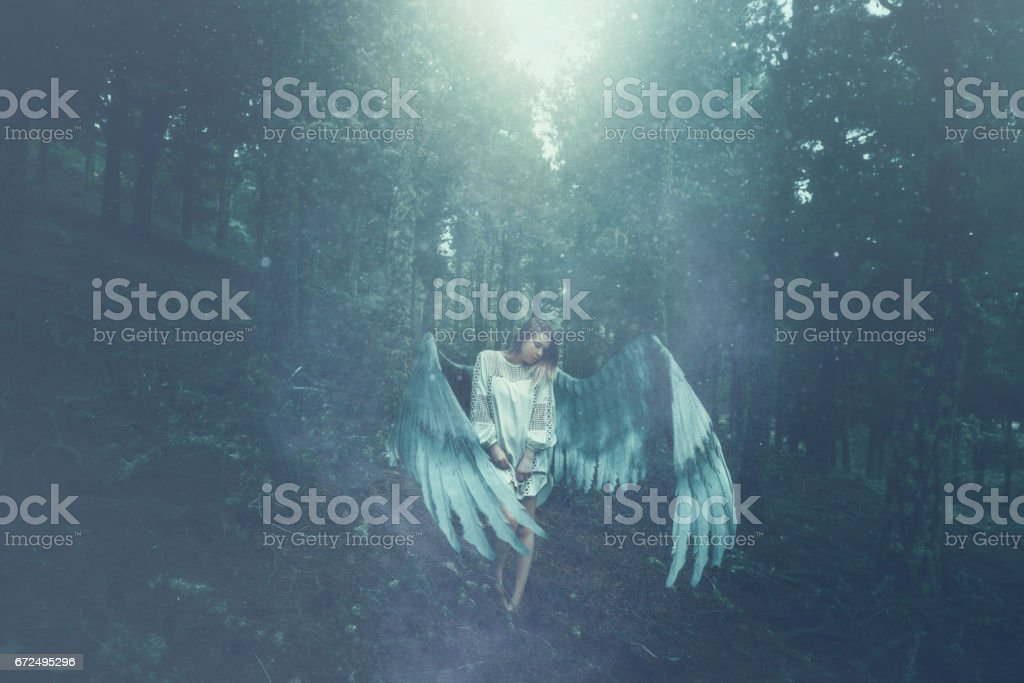 fallen angel in the forest stock photo