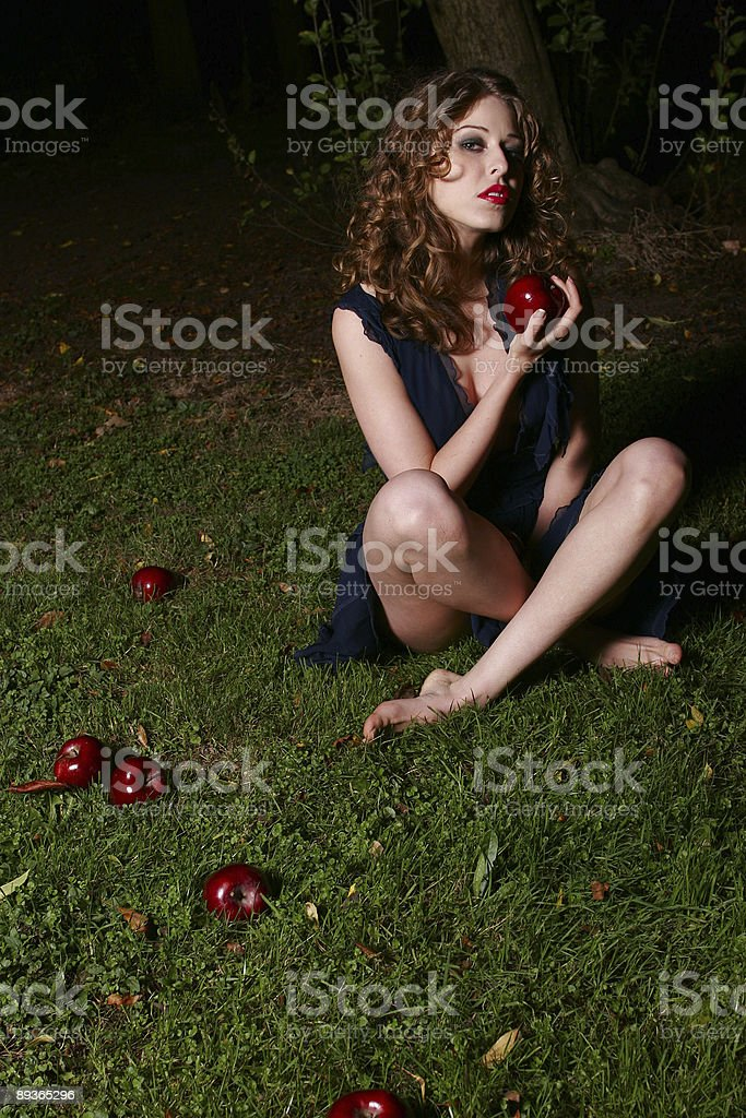 Fallen apples royalty-free stock photo