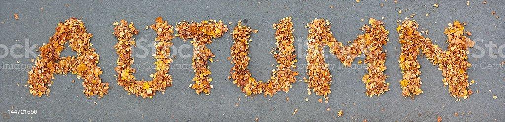 fallen leaves makes word AUTUMN royalty-free stock photo