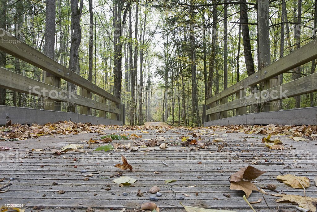 Fallen leaves on a bridge royalty-free stock photo