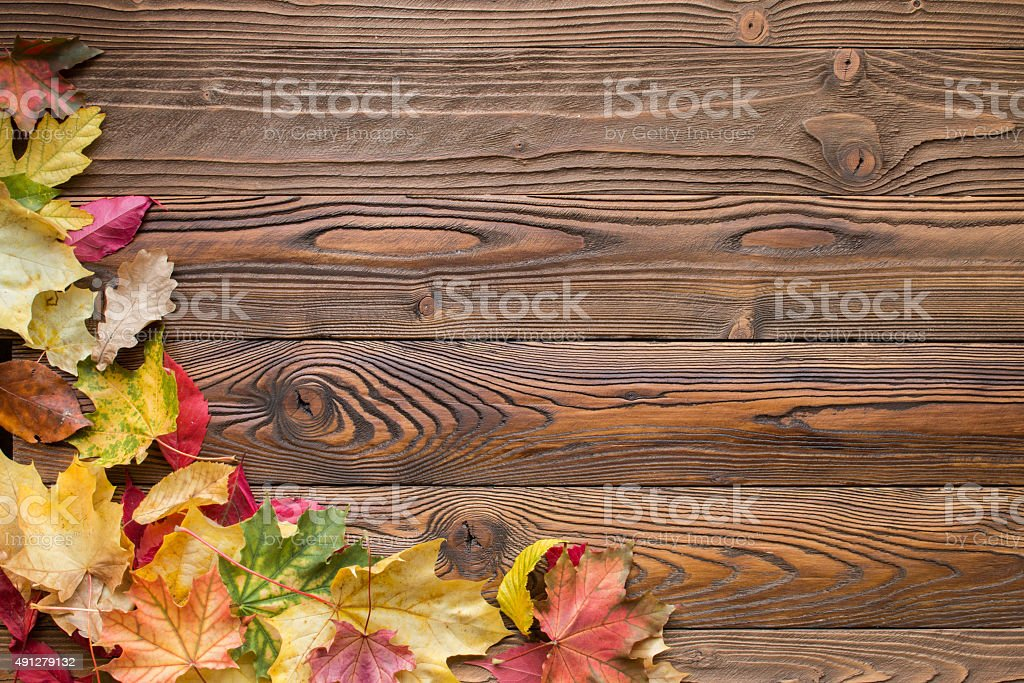 fallen leaves on wooden background stock photo