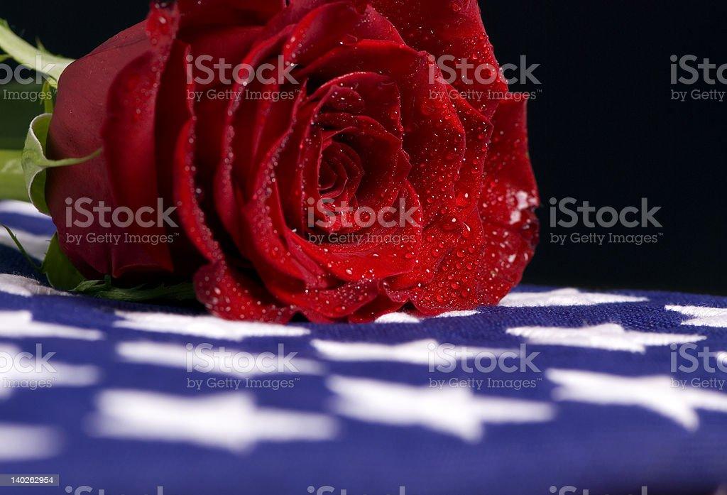 Fallen tears stock photo