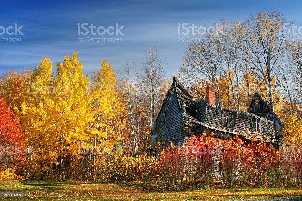 Falling Apart and Abandoned House Among Autumn Trees stock photo