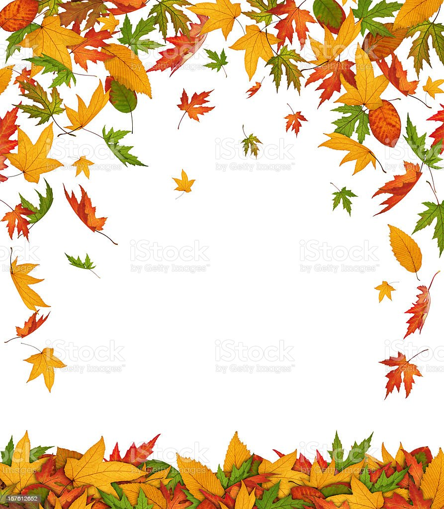 Falling Autumn Leaves royalty-free stock photo