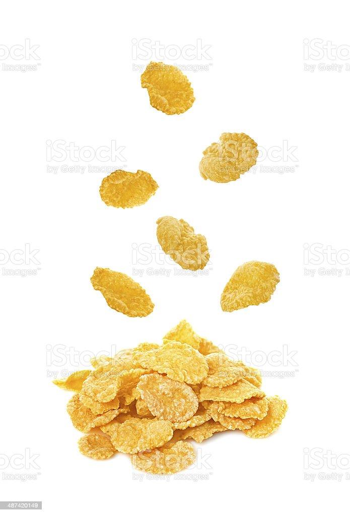 falling corn flakes isolated on white background stock photo