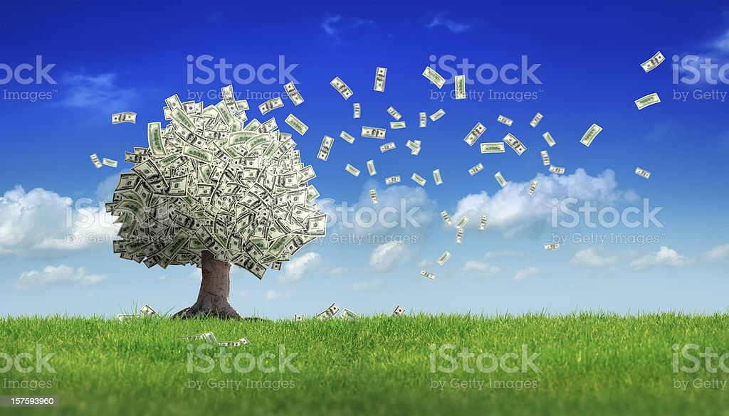 falling dollar bills from money tree stock photo