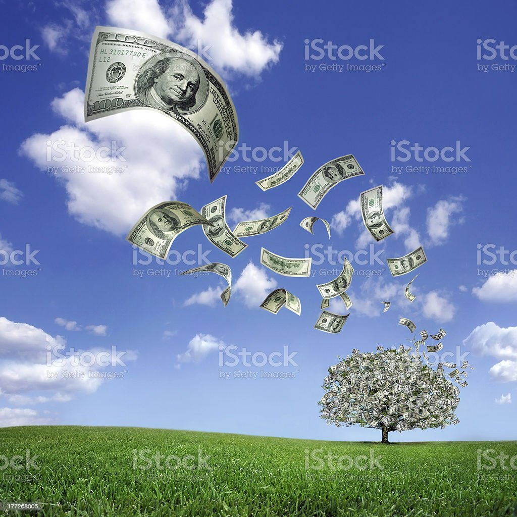 falling dollar bills from money tree royalty-free stock photo
