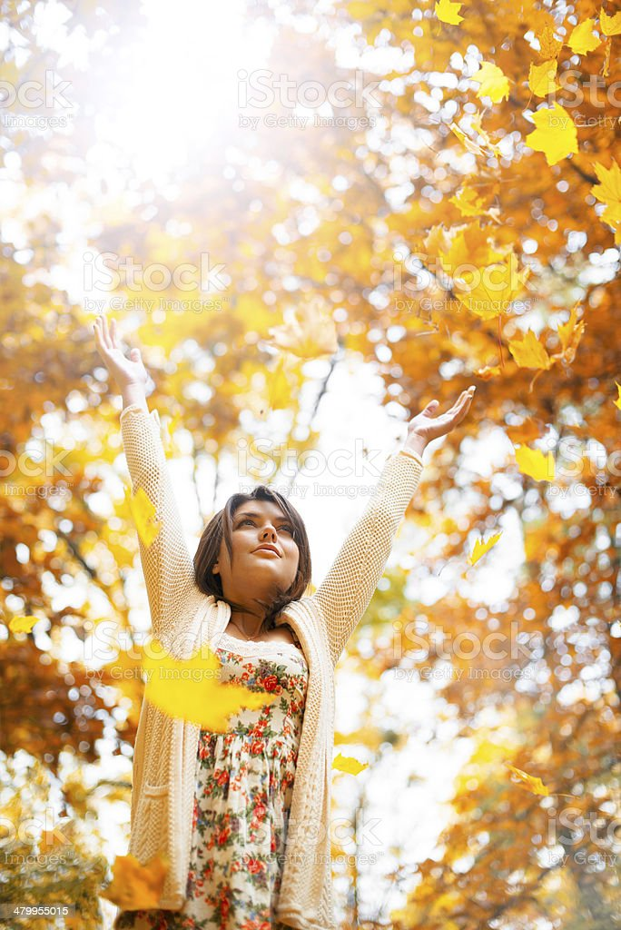 Falling leaves 2 royalty-free stock photo