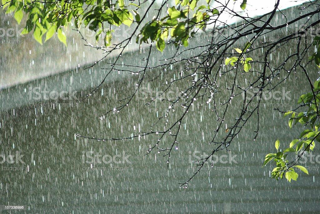 falling rain nature background stock photo