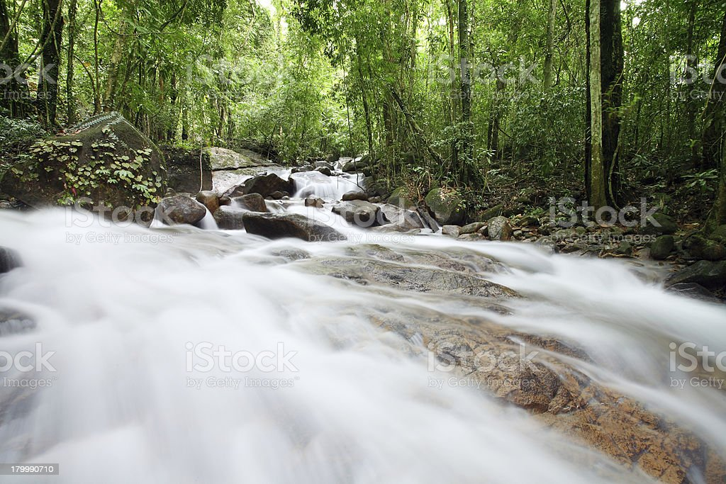Falling water in natural forests royalty-free stock photo