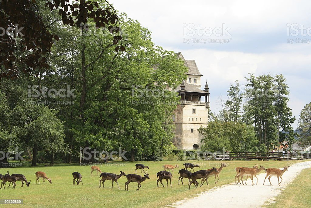 Fallow deers and Blatna castle royalty-free stock photo