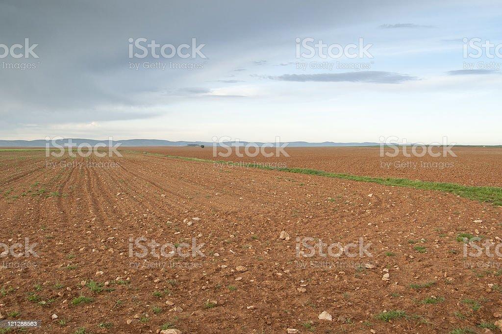 Fallow field stock photo