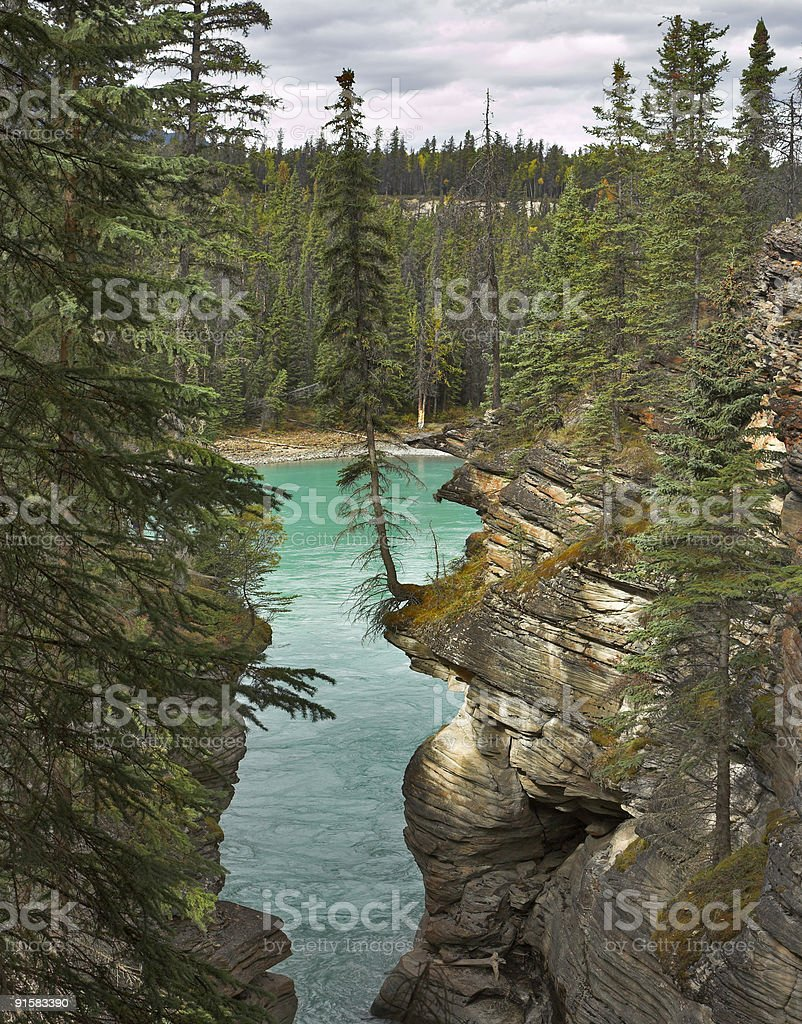 Falls 'Athabasca' royalty-free stock photo