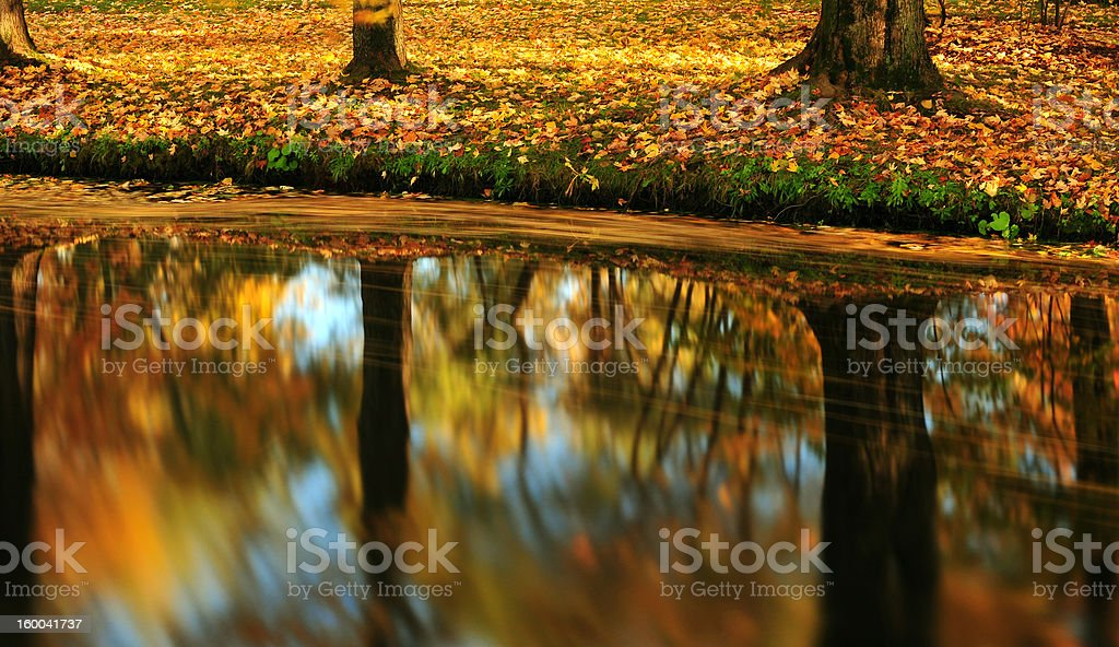 fall's color stock photo