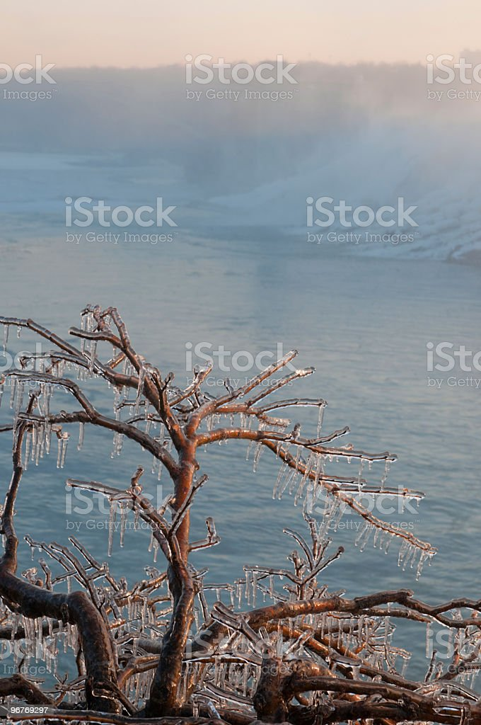 Falls on Niagara River with frozen tree stock photo