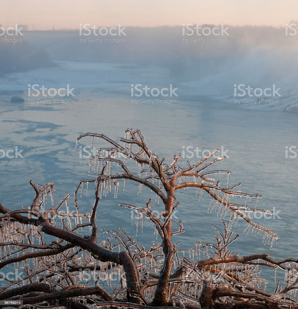 Falls on Niagara River with frozen tree (Panorama) stock photo