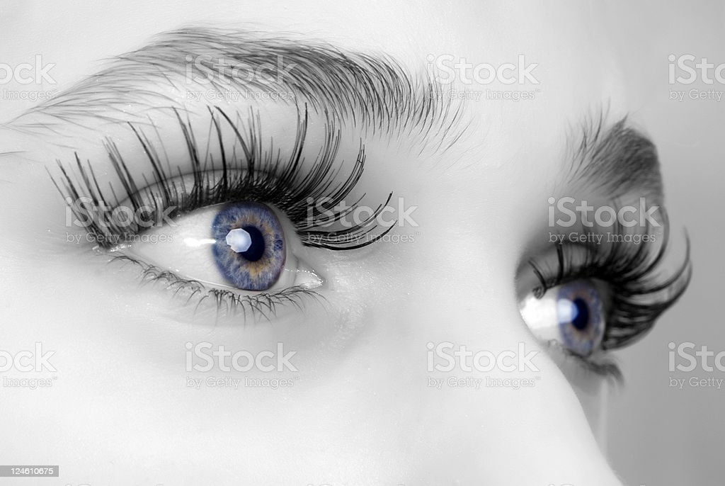 false eyelashes royalty-free stock photo