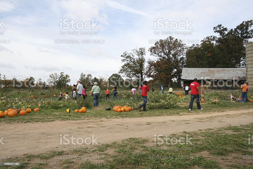Families at Pumpkin Patch royalty-free stock photo