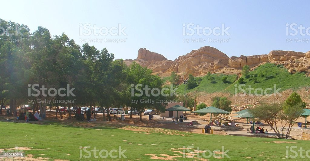 Families Picnicking at Al Ain Oasis in UAE stock photo