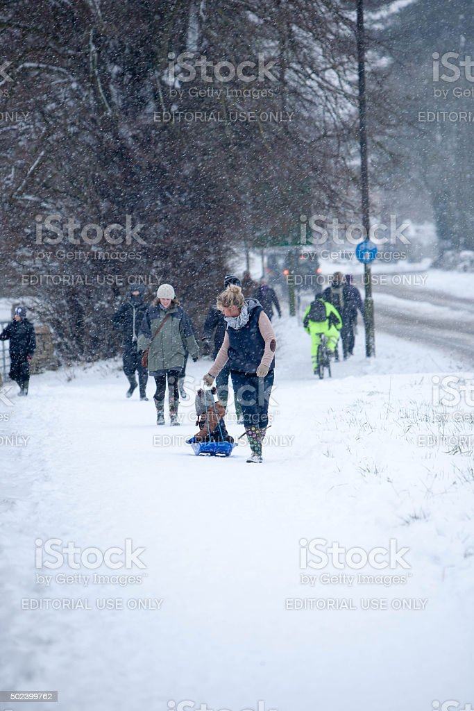 Families taking a walk on a snowy January day stock photo