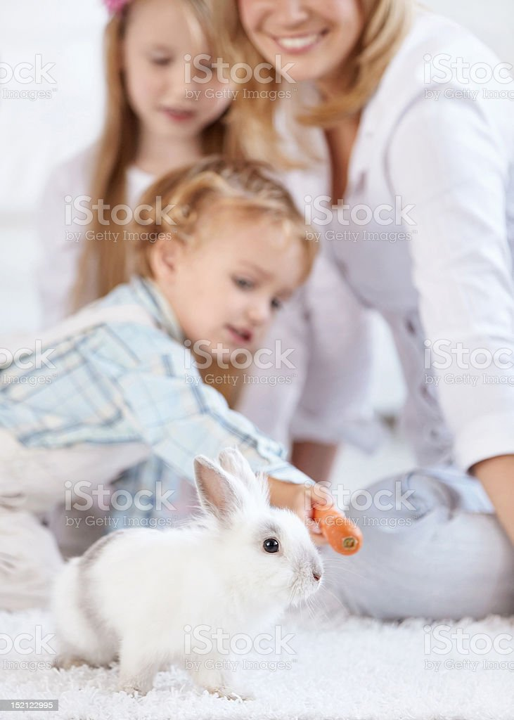 Family and a little white rabbit royalty-free stock photo