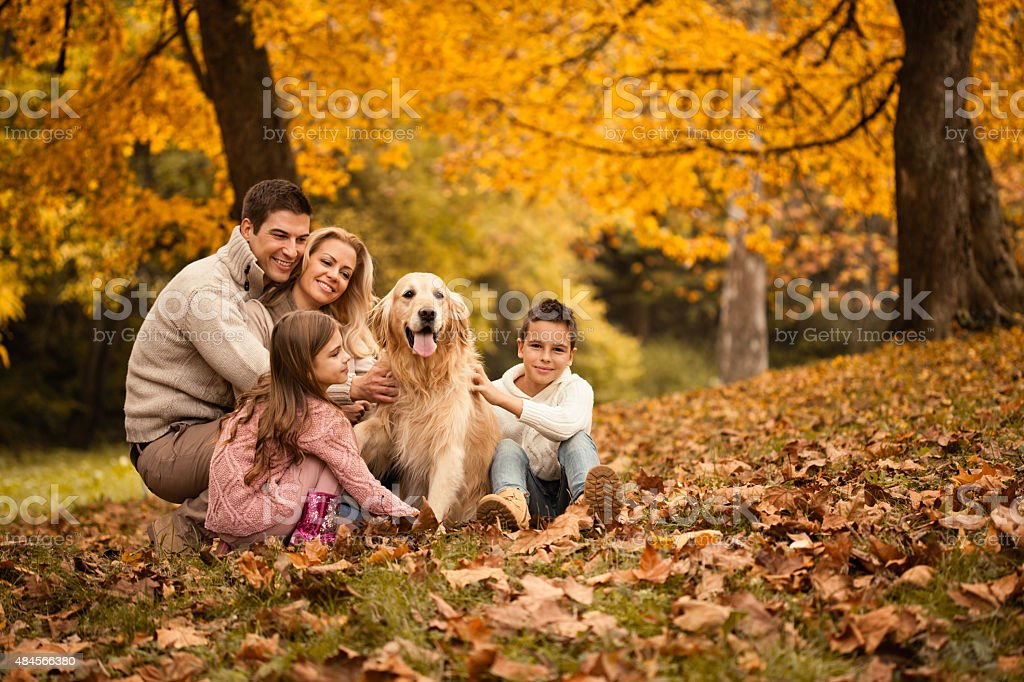 Family and Golden Retriever in the park stock photo