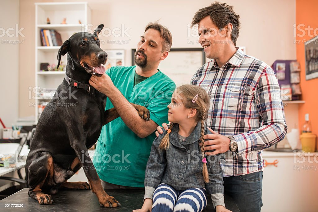 Family brought their pet to medical exam at veterinarian's. stock photo