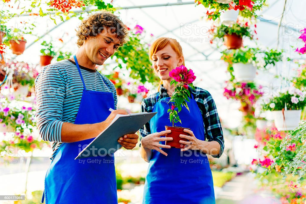 Family business with flowers and plants stock photo
