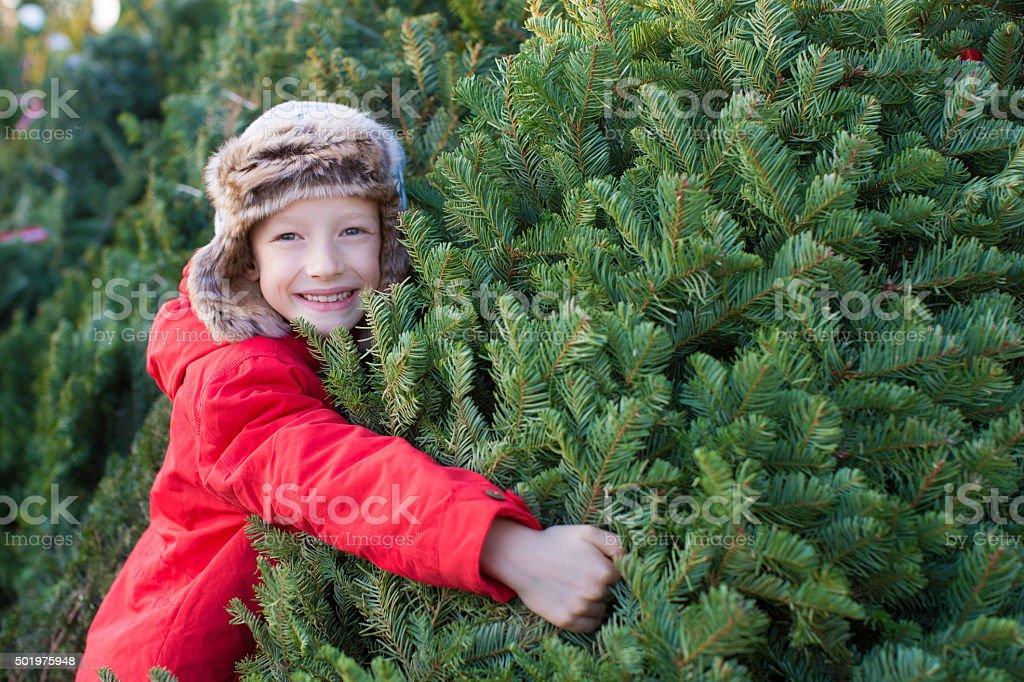 family buying christmas tree stock photo