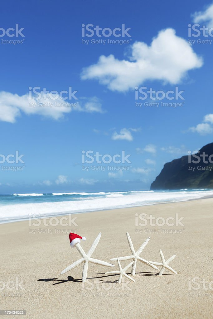 Family Christamas Vacation in Tropical Beach of Hawaii royalty-free stock photo