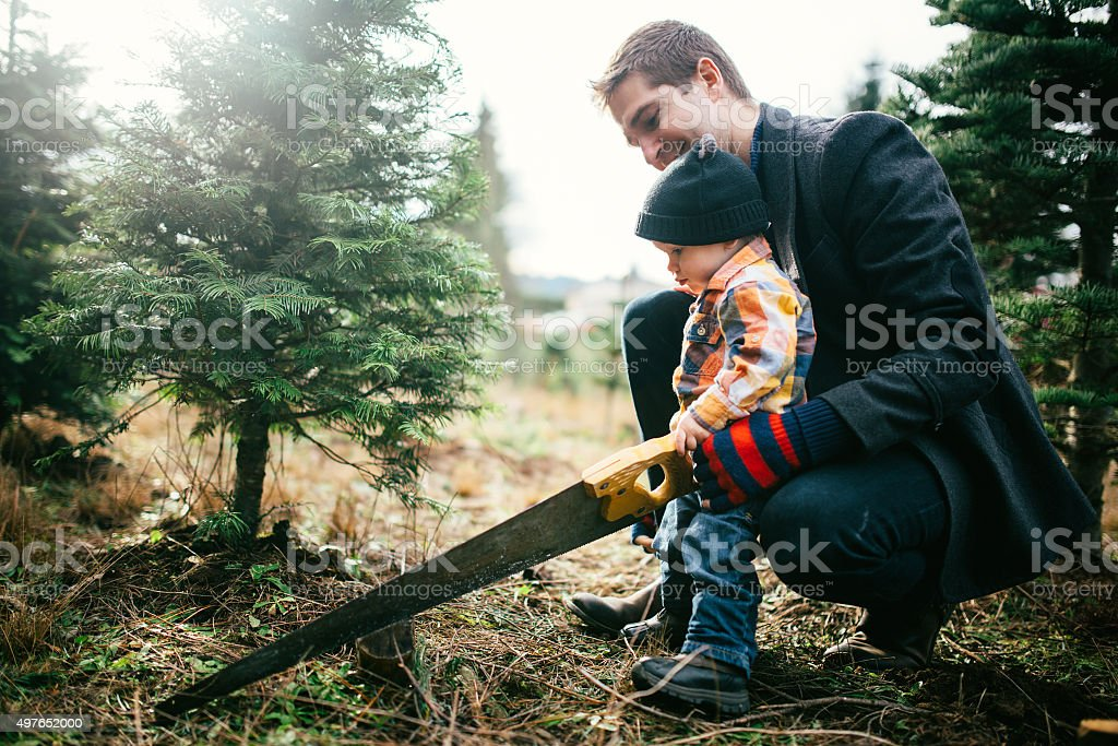 Family Cutting Down Christmas Tree stock photo