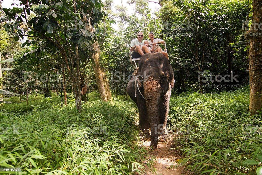 Family Elephant ride stock photo