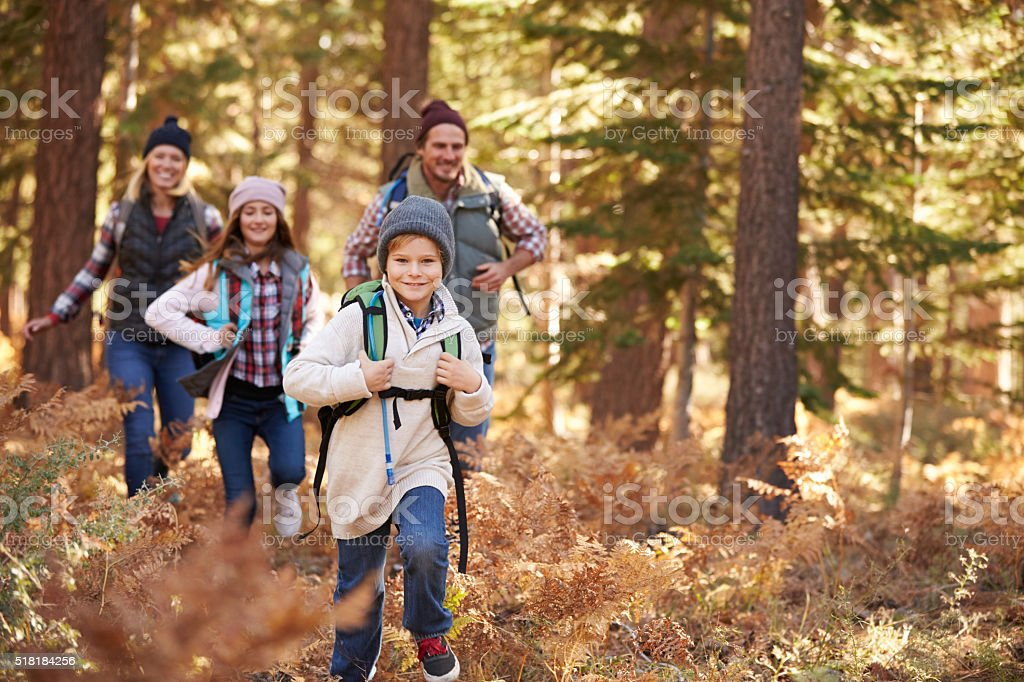 Family enjoying hike in a forest, California, USA stock photo