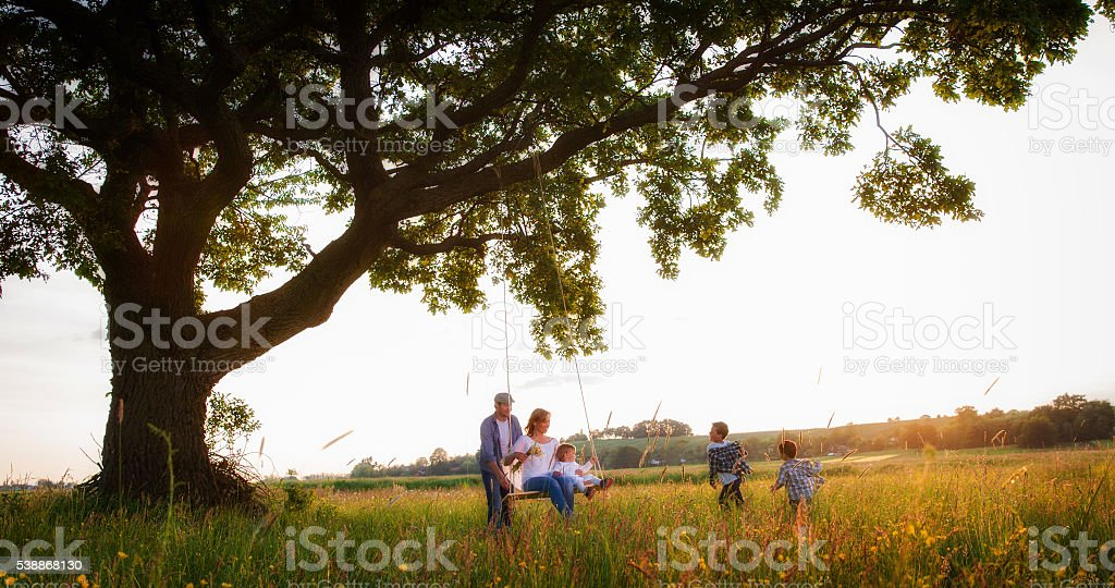 Family enjoying together in park stock photo
