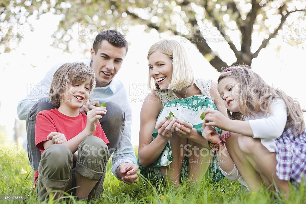Family examining plants outdoors royalty-free stock photo